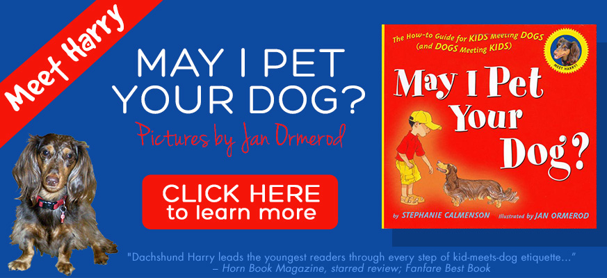 slider4-may-i-pet-your-dog-873x400